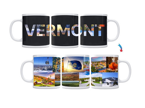 State of Vermont ThermoH Exray Mug