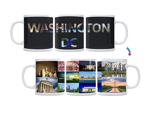 Washington DC ThermoH Exray Mug