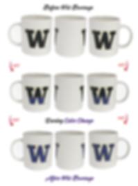University of Washington Mug Amazon2.png