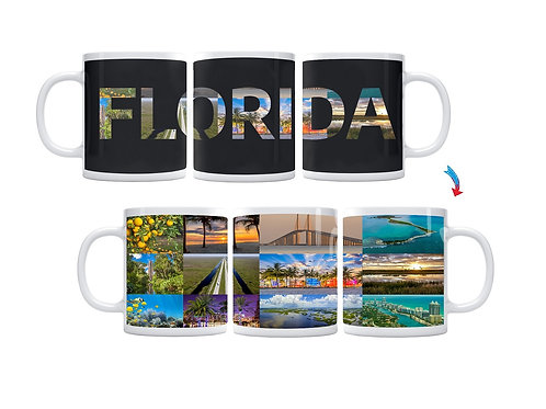 State of Florida ThermoH Exray Mug