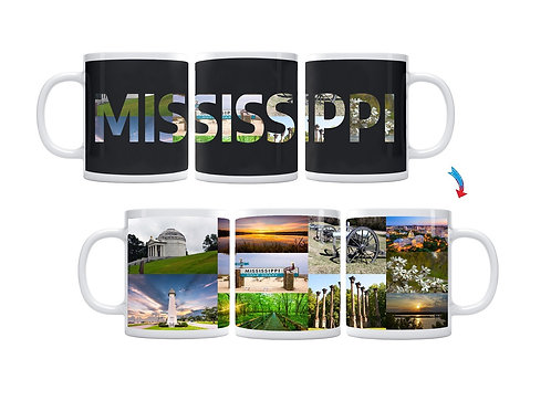 State of Mississippi ThermoH Exray Mug