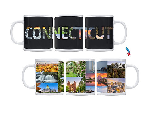 State of Connecticut ThermoH Exray Mug