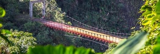#13 Hiking Trail in Wenshan Lushui
