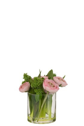 Renoncule dans vase plastique
