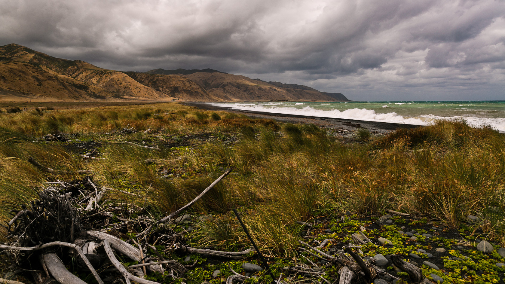 Cape Palliser coastline New Zealand