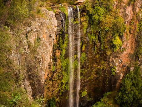 Queen Mary Falls & The Scenic Rim