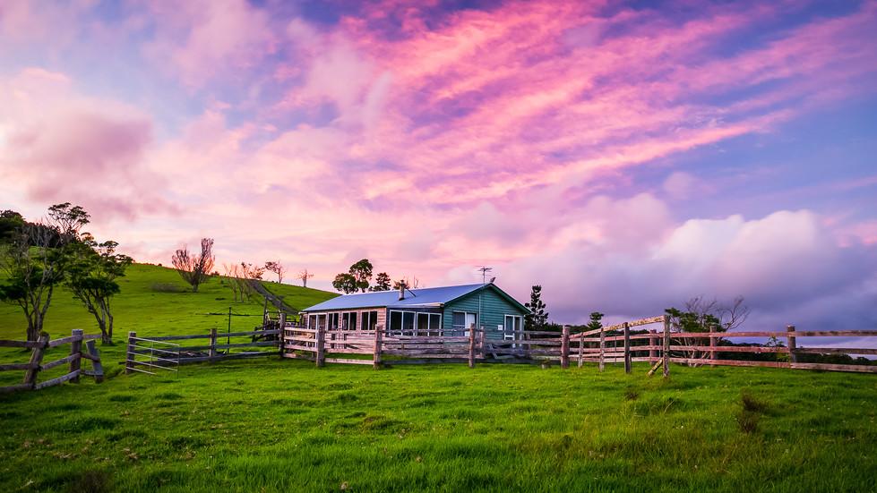Luke's Farm