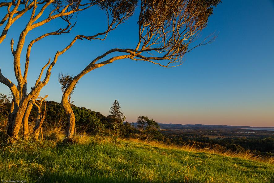 Byron Bay Hinterland, NSW
