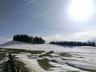 Aussicht Richtung Alpen