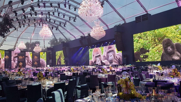 Leonardo DiCaprio Foundation Gala - Staff praise