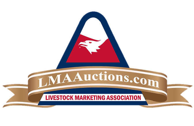 LMA Auctions no background.png