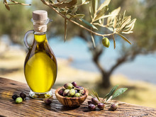 Become an Instant Italian-American Olive Oil Expert