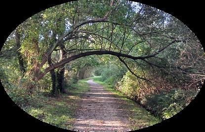 chemin pont.png