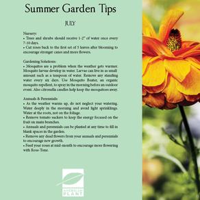 Garden Guide | American Plant