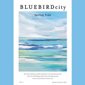 BlueBird City Launch May 1st!