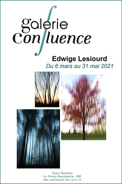 Annonce Expo galerie Confluence.jpg