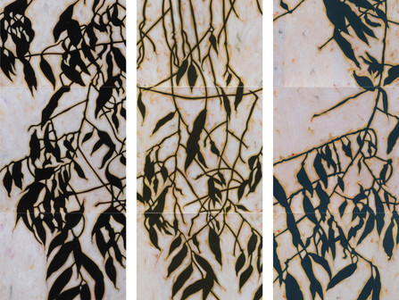 Jill Sykes, an artist whose work embodies the sheltering aspects and abstract shapes of nature.