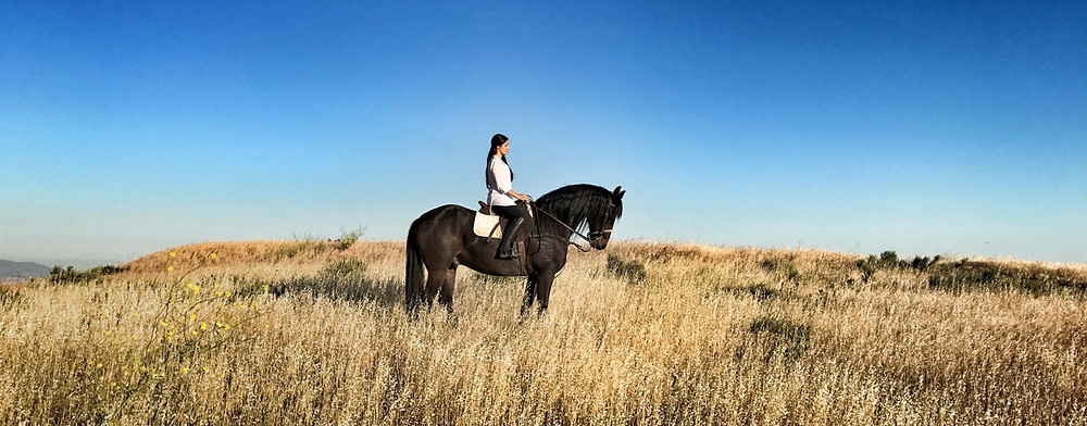 Rider Samira Nowparast and Horse Athos