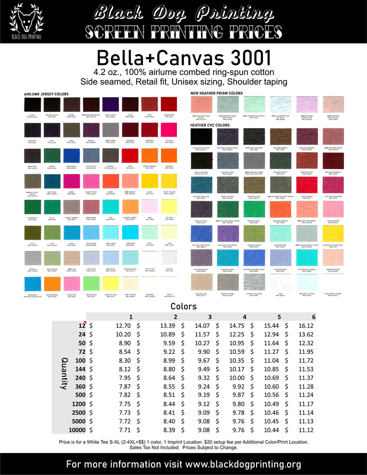 Bella Canvas 3001 Flyer.jpg