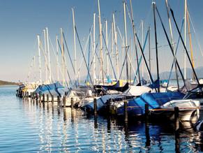 Visita al puerto pesquero y al mercado de abastos de Marbella