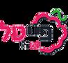 Logo-PIIITEL.png