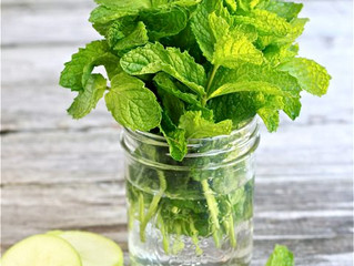 DIY Apple Mint Face Mask