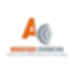 Acoustique consulting
