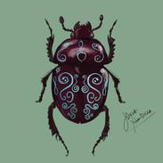 Beetle design