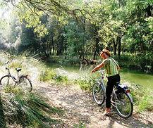 Donna bionda bicicletta parco Delta Po