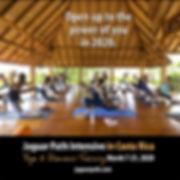 JP-CR-BodhiTree-yoga.jpg