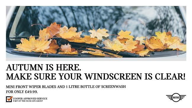 MINI Autumn Wiper blades