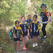 Cubs hiking