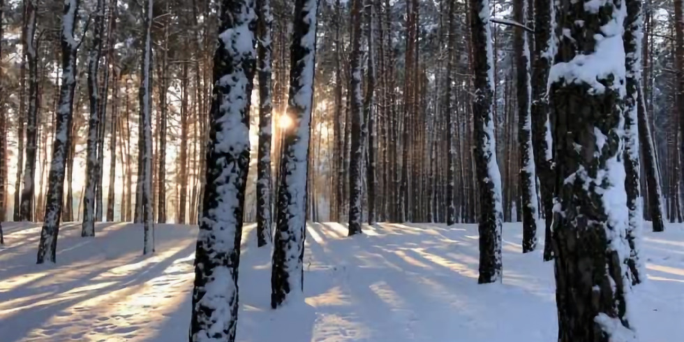 The Sounds of Solstice