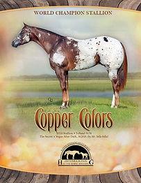 Copper Colors Daniele.jpg