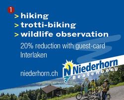 Niederhorn - Beatenberg