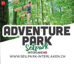 Adventure Park Seilpark Interlaken
