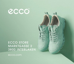 Ecco Store Shoes
