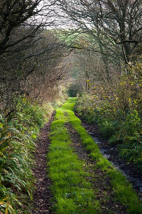 West Cork Lanes