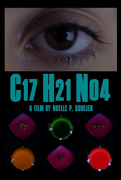 C17H21NO4 Poster
