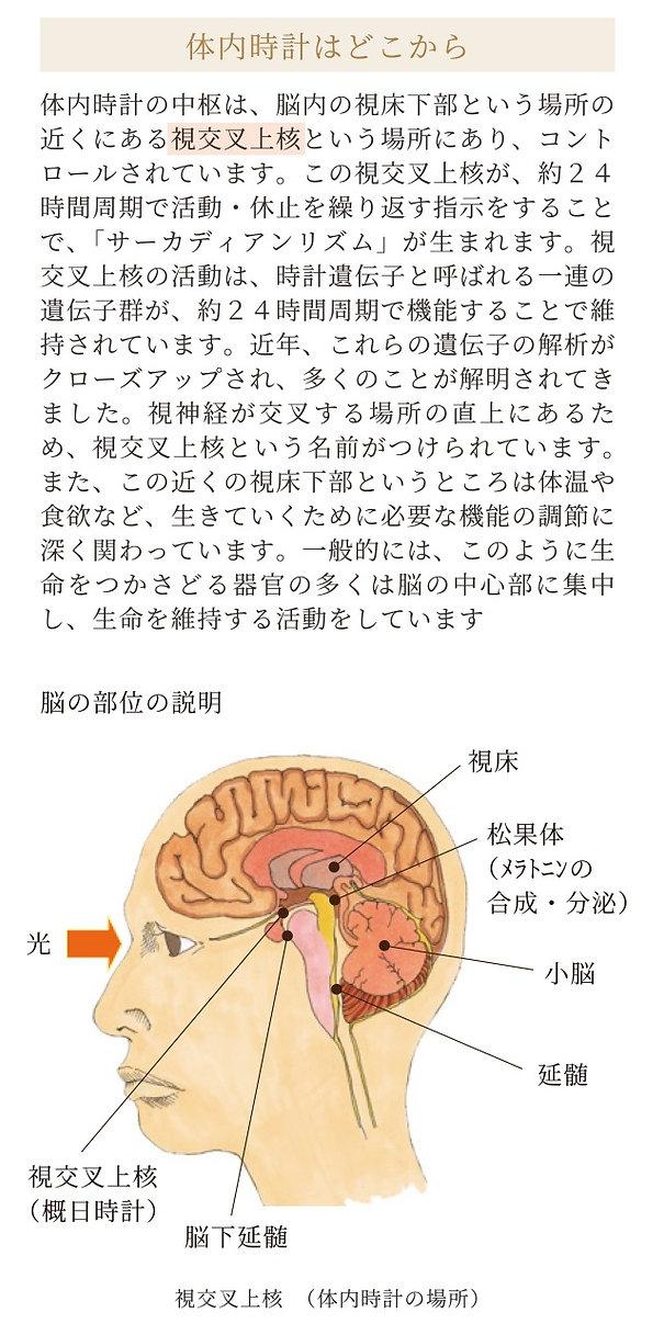 1-2-4.jpg