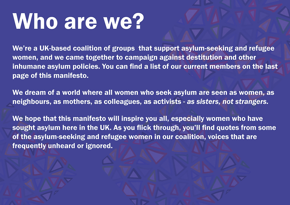 SNS Manifesto3.png