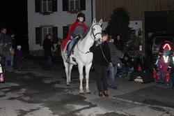 Pferd13