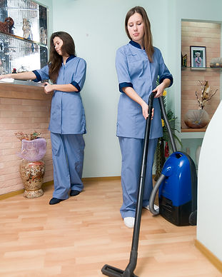 Ladies_Home_cleaning.jpg