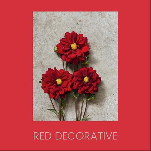 RED DECORATIVE