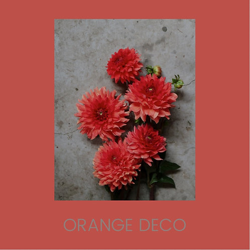 ORANGE DECORATIVE