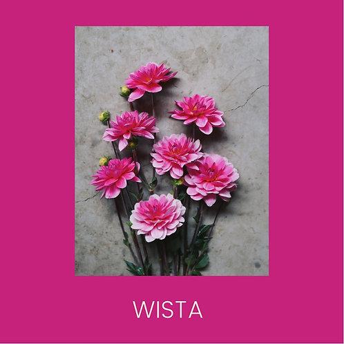 WISTA