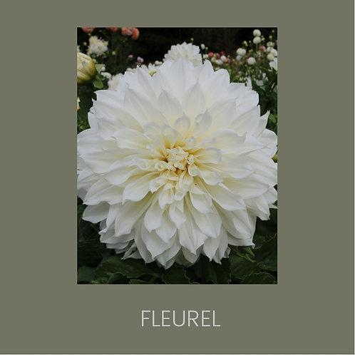 FLEUREL