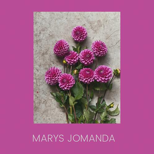 MARYS JOMANDA