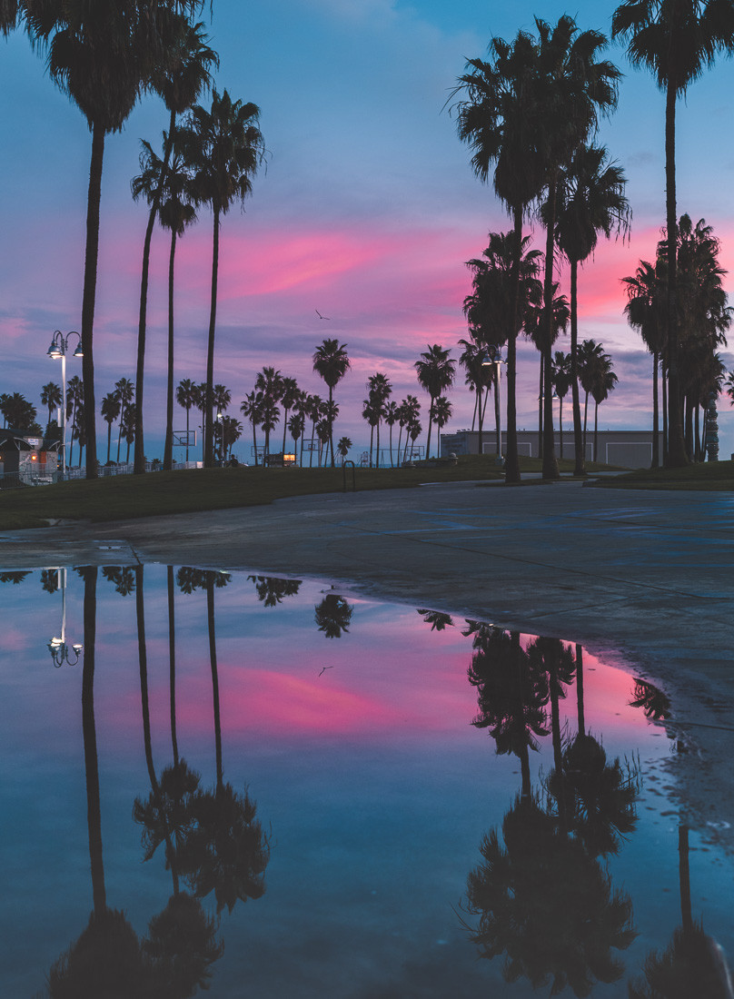 Hot pink Sunset Venice Beach California