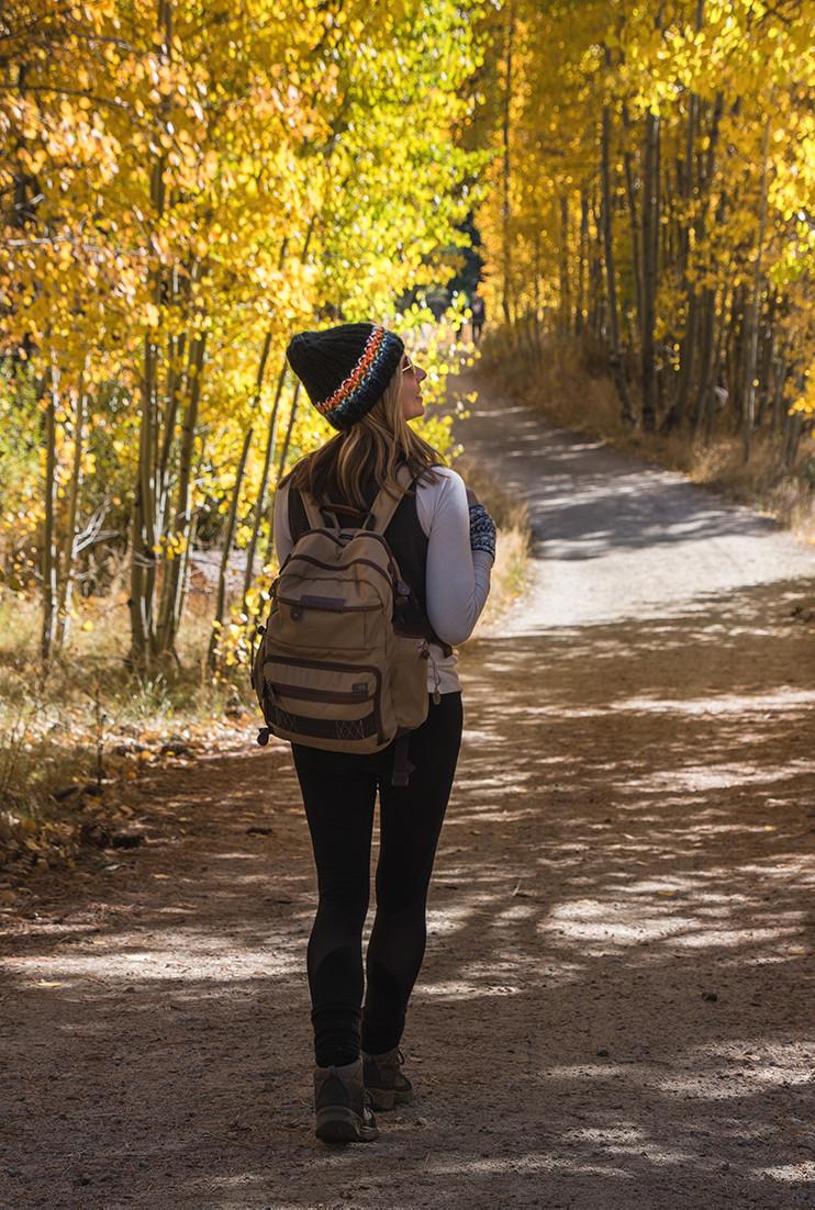 Yellow aspens along North Canyon Road at Spooner Lake